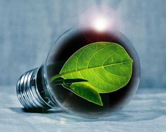 inovacije-u-zelenoj-industriji